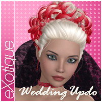 eXotique Wedding Updo Themed Hair Anagord