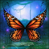 Fairy Illuminations Backgrounds and Wings image 4