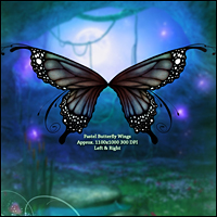 Fairy Illuminations Backgrounds and Wings image 5