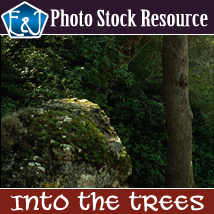 Into The Trees 2D Graphics Merchant Resources EmmaAndJordi