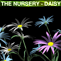 The Nursery - Daisy 3D Models designfera