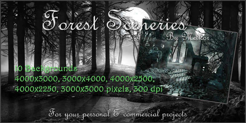 Forest Sceneries