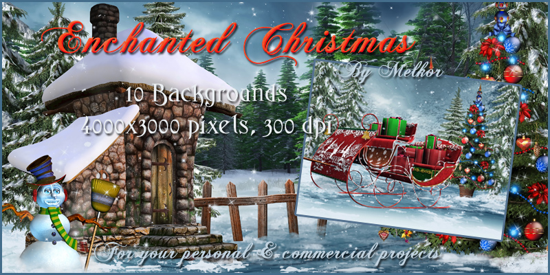 Enchanted Christmas