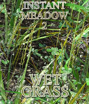 Flinks Instant Meadow 2 - Wet Grass by Flink