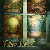 The Elven Wood image 1