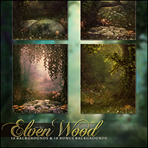 The Elven Wood image 2