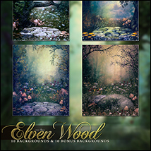 The Elven Wood image 4