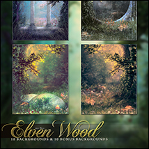 The Elven Wood image 5