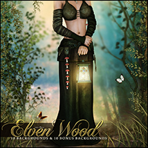 The Elven Wood image 7