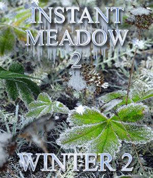 Flinks Instant Meadow 2 - Winter 2 3D Models Flink