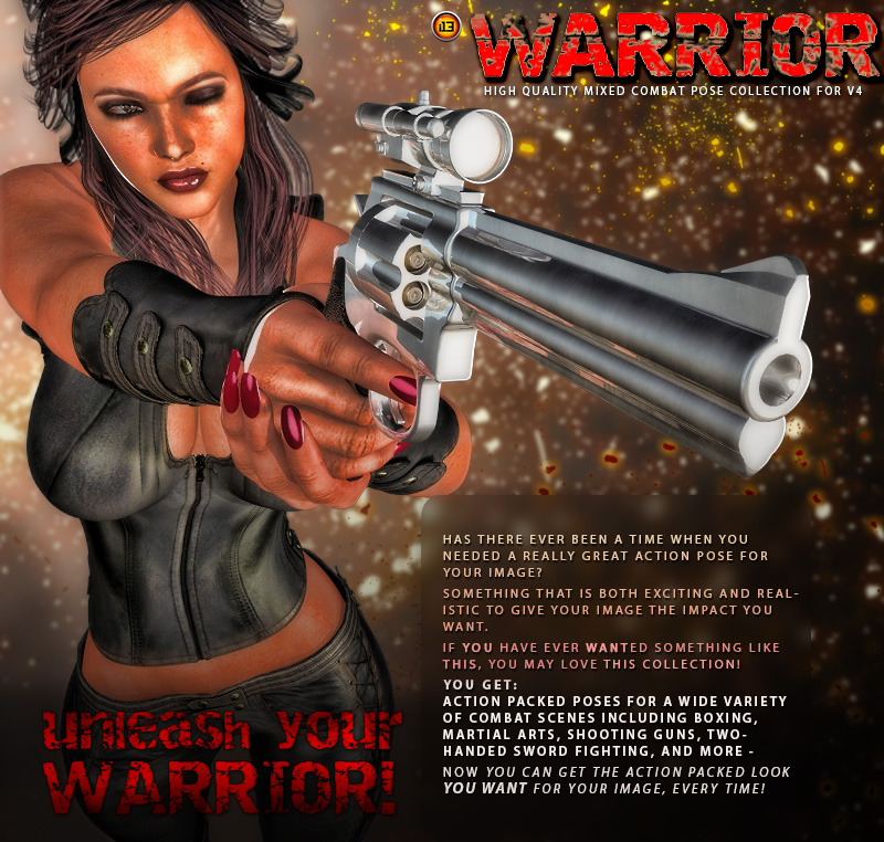 i13 WARRIOR Vol 1