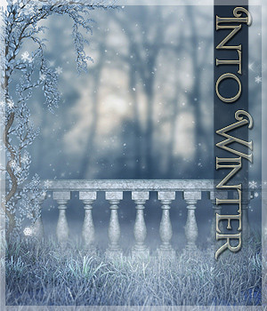 Into Winter 2D Graphics Sveva
