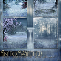 Into Winter image 1