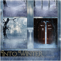 Into Winter image 2