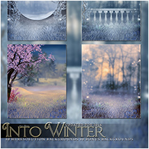 Into Winter image 3
