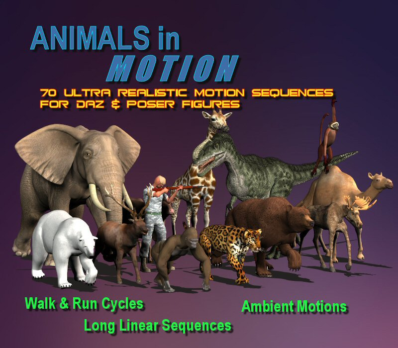 Animals in Motion 1