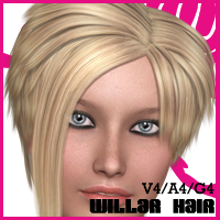 Willar Hair V4-A4-G4 3D Figure Assets nikisatez