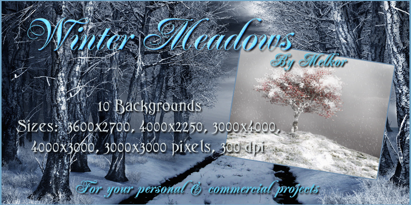 Winter Meadows