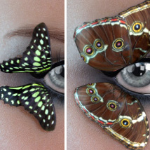 Lashes Delight image 2