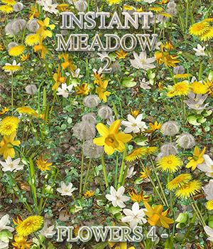 Flinks Instant Meadow 2 - Flowers 4 3D Models Flink