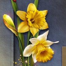 Moonbeam's Dances with the Daffodils image 1