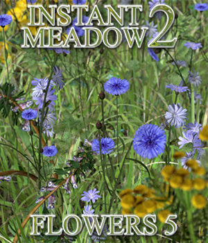 Flinks Instant Meadow 2 - Flowers 5 by Flink