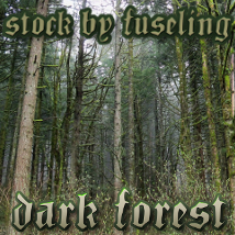 FSL PhR Dark Forest Stock Photography fuseling