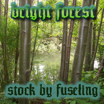 FSL Phr Bright Forest Stock Photography fuseling