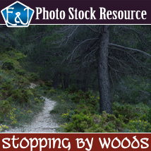 Stopping By Woods 2D Graphics EmmaAndJordi