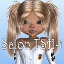 Salon TSH-1 3D Figure Essentials 3D Models JudibugDesigns